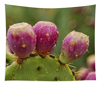 The Prickly Pear  Tapestry