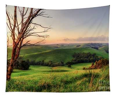 The Valley Tapestry