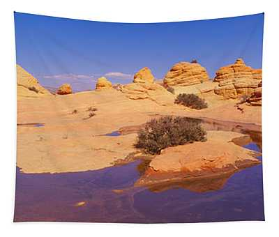 The Wave, Sandstone Formation, Kenab Tapestry