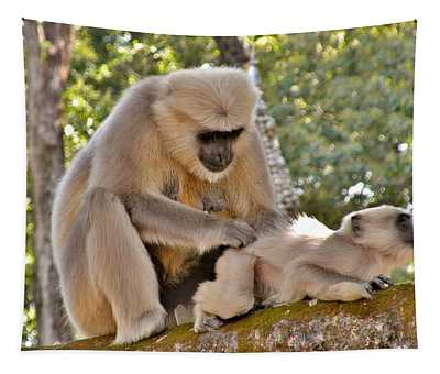 There Is Nothing Like A  Backscratch - Monkeys Rishikesh India Tapestry