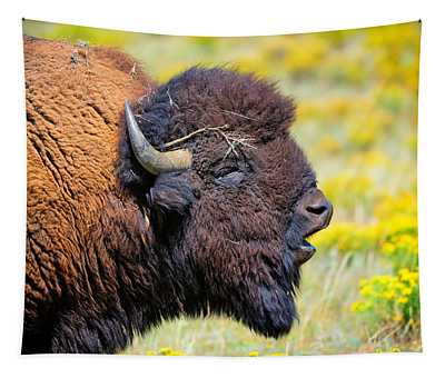 This Is Bull Tapestry