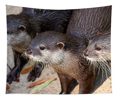 Three Otters Tapestry