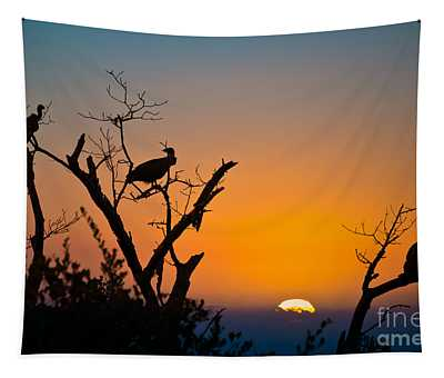Three Vultures Waiting Tapestry