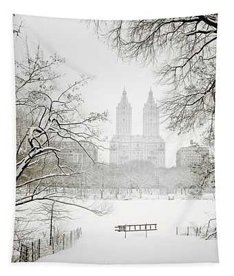 Through Winter Trees - Central Park - New York City Tapestry