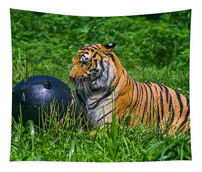 Tiger Playing With Ball Tapestry