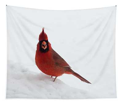 Tiny Cardinal In The Snow Tapestry