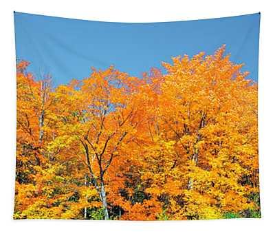 Trees Autumn Ontario Canada Tapestry