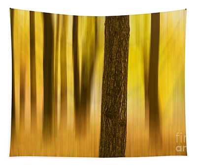 Trees In Autumn Forest Tapestry