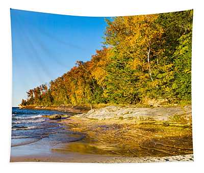 Trees On The Beach, Miners Beach Tapestry