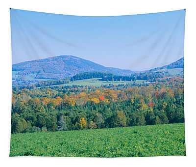 Trees With A Mountain Range Tapestry
