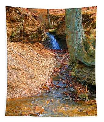 Trickling Waterfall By Shellhammer Tapestry