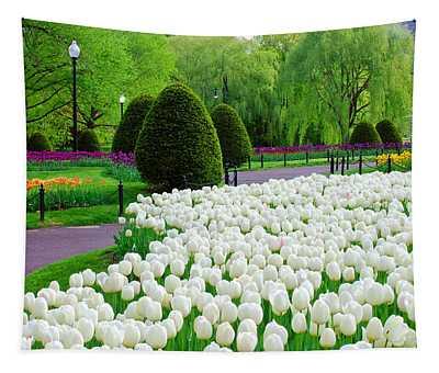 Tulips Boston Public Gardens  Tapestry