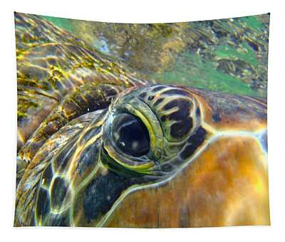 Turtle Eye Tapestry