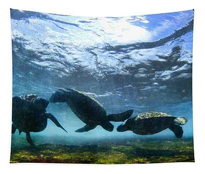 Turtle Trio Tapestry