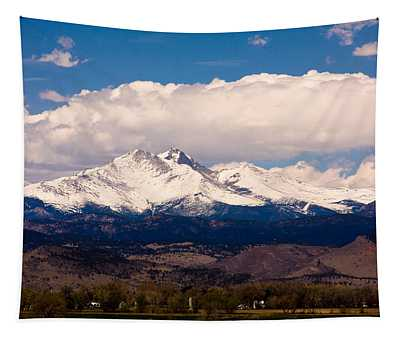 Twin Peaks Snow Covered Tapestry