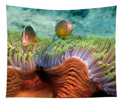 Two Skunk Anemone Fish And Indian Bulb Tapestry