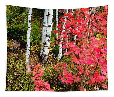 Uinta Colors Tapestry