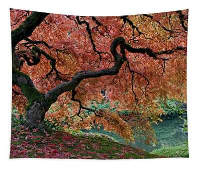Under Fall's Cover Tapestry