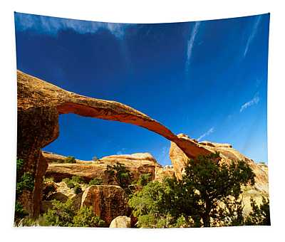 Utah Arches National Park  Tapestry