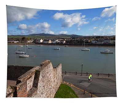 View From King Johns Castle, Dungarvan Tapestry