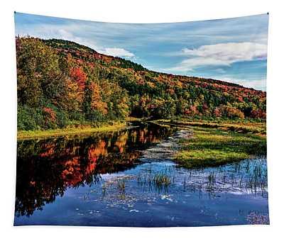 View Of Small Lake North Of Saranac Tapestry