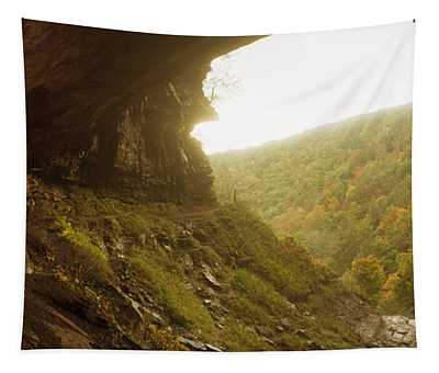 View Of The Catskills From Kaaterskill Tapestry