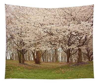 Washington Dc Cherry Blossoms Tapestry