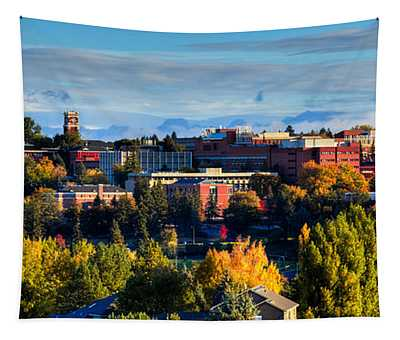 Washington State University In Autumn Tapestry
