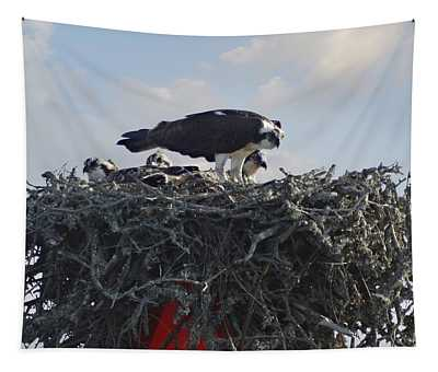 Watching The Kids - Ospreys Tapestry