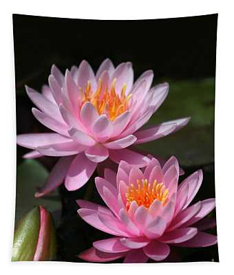 Water Lilies Love The Sun Tapestry