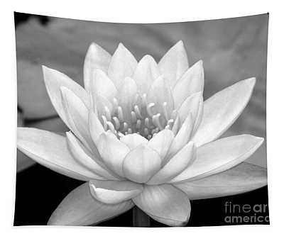 Water Lily In Black And White Tapestry