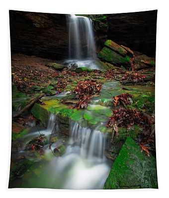 Frankfort Mineral Springs Waterfall  Tapestry
