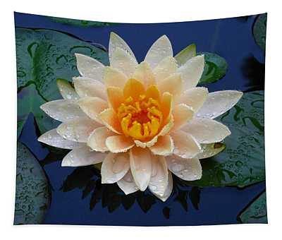 Waterlily After A Shower Tapestry