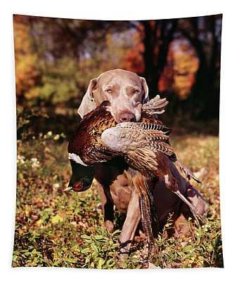Weimaraner Hunting Dog Retrieving Ring Tapestry