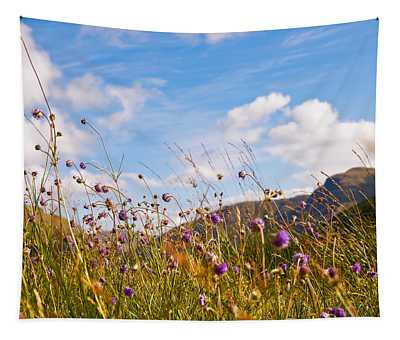 When The Sun Is Shining Everything Around Smiling Towards. Scotland Tapestry