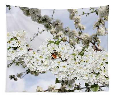 White Cherry Branch On Sky Tapestry