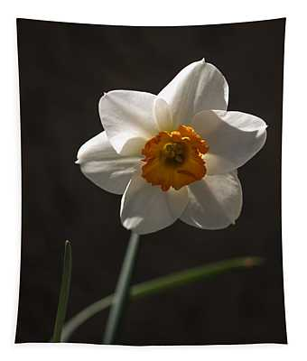 White Yellow Daffodil Tapestry