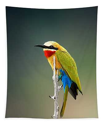 Whitefronted Bee-eater Tapestry