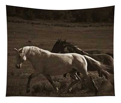 Wild Mustangs Of New Mexico 10 Tapestry