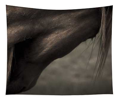 Wild Mustangs Of New Mexico 11 Tapestry