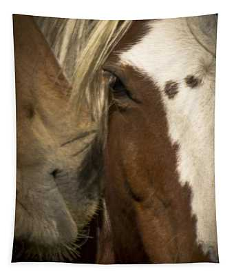 Wild Mustangs Of New Mexico 32 Tapestry