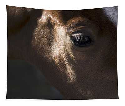 Wild Mustangs Of New Mexico 41  Tapestry