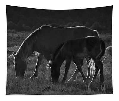 Wild Mustangs Of New Mexico 7 Tapestry