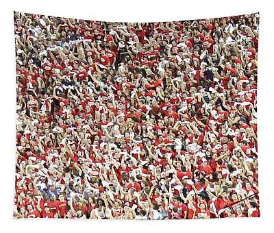 Wildcats Tapestry
