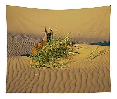 Wind Makes Ripples In The Sand Tapestry
