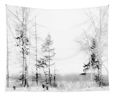 Winter Drawing Tapestry