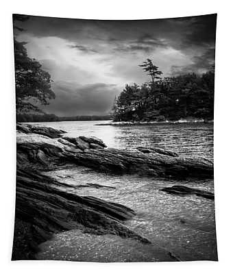 Winter Moonlight Wolfes Neck Woods Maine Tapestry