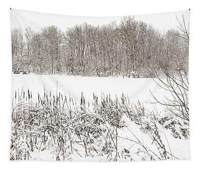 Winter Pond Tapestry