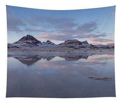 Winter Salt Flats Tapestry