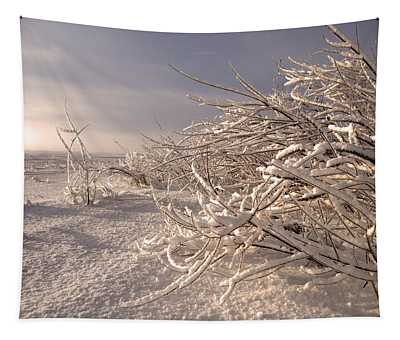 Winter Sun ... Tapestry